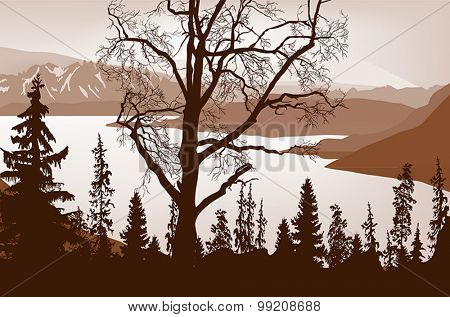 illustration with large brown tree in forest near mountain lake