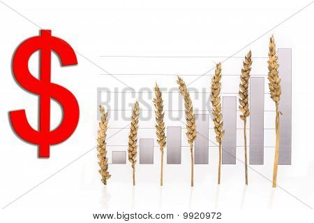 price growth grain