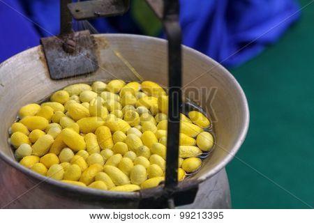 Silkworm cocoon in a pot to prepare thread silk.
