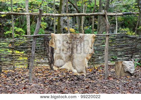 Tanned hides hang in to dry in an native American conservation area