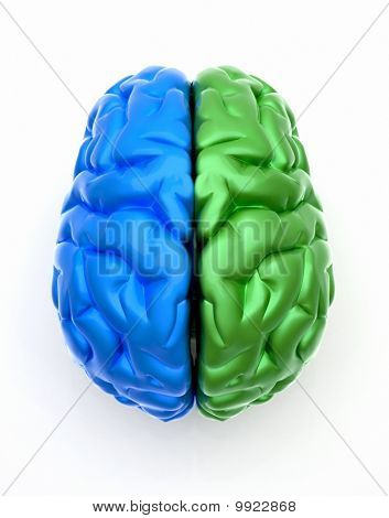 Blue End Green Brain