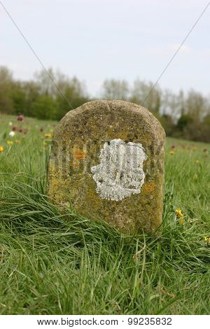 Old boundary marker in meadow
