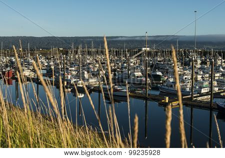 Fishing boats at Homer, Alaska