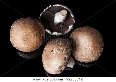 Four champignon mushrooms on black from above