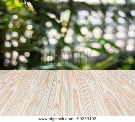 Wood Texture And Sunlight Bokeh