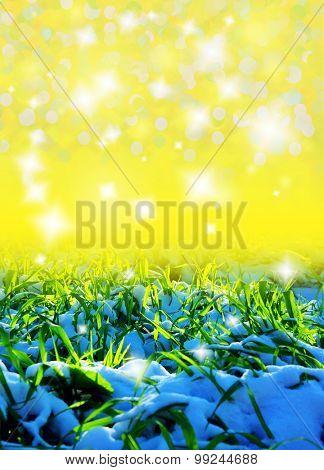 grass under snow background