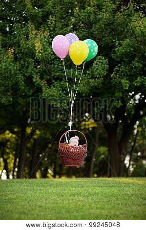 Baby Girl Flying In A Basket On The Balloons On A Background Of Green Trees