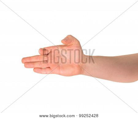 Dog-like hand gesture isolated