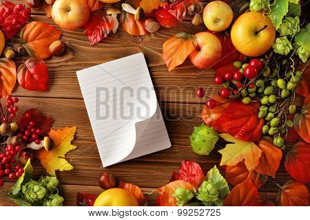 open empty notebook and autumn background - fruits and autumn leaves