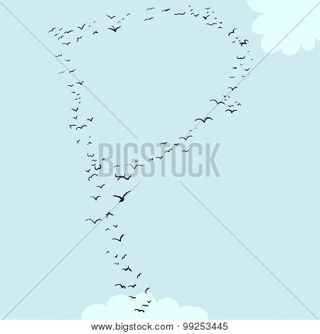 Bird Formation In P