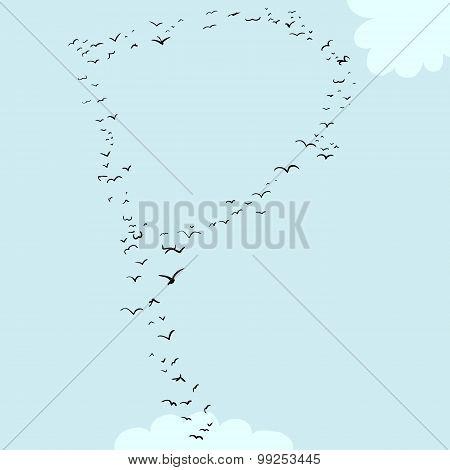 Bird Formation In P