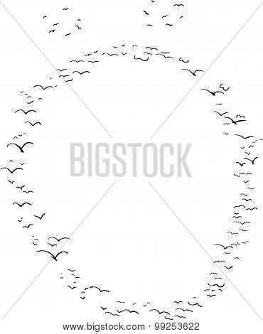 Bird Formation In Diacritic O