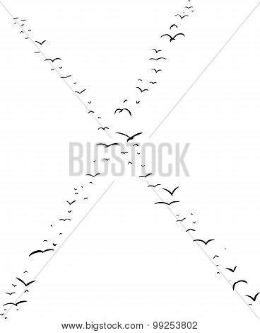 Bird Formation In X