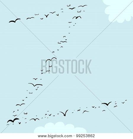 Bird Formation In Z
