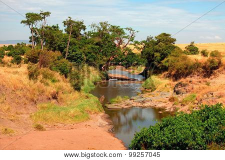 River In Masai Mara