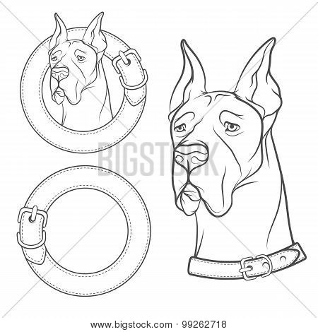 A set of vector drawing of the dog in the collar