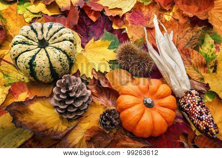 Natural Autumn Decoration