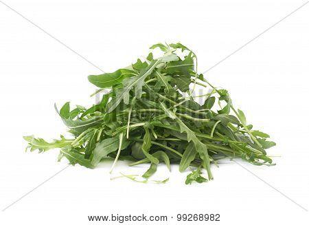 Eruca sativa rucola rocket salad