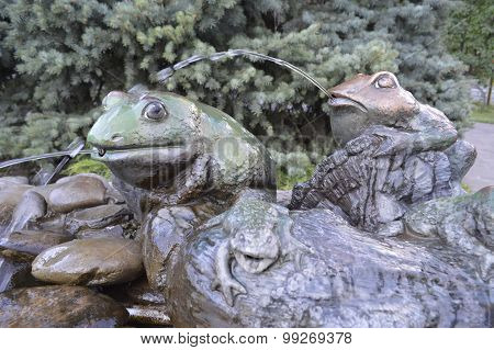 Toads in water
