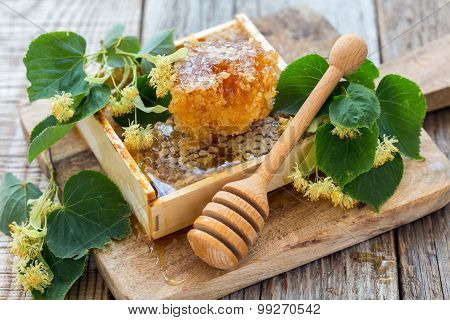 Linden Flowers And Honey In The Comb.