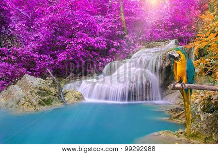 Parrot Macaw Against Tropical Waterfall In Deep Forest