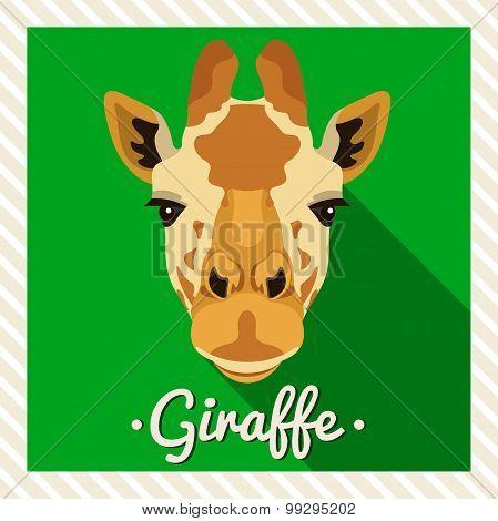 Vector portrait of a giraffe. Symmetrical portraits of animals. Vector Illustration, greeting card.