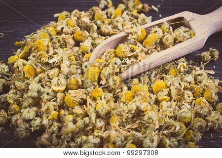 Vintage Photo, Dried Chamomile On Wooden Table, Alternative Medicine