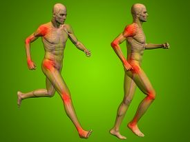 picture of male body anatomy  - Concept or conceptual 3D human man or male skeleton pain or ache anatomy transparent body - JPG