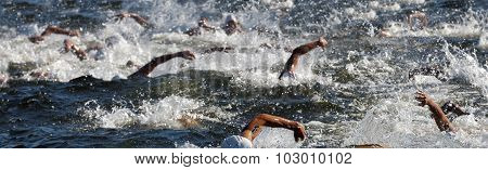 Chaos Of Swimming Arms In The Water