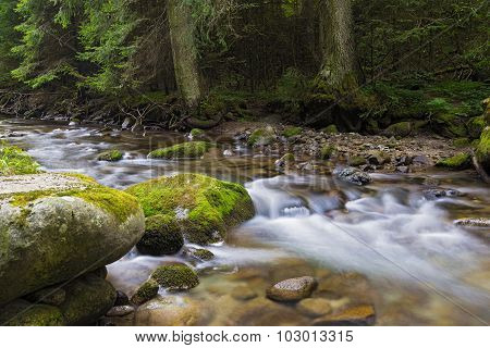 Mountain River Flowing Among Mossy Stones