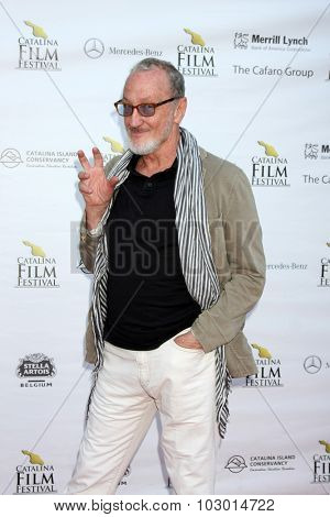 LOS ANGELES - SEP 26:  Robert Englund at the Catalina Film Festival Saturday Gala at the Avalon Theater on September 26, 2015 in Avalon, CA