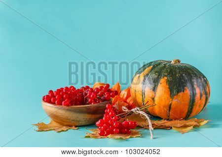 Fall Harvest On Aquamarine Shadowless Background