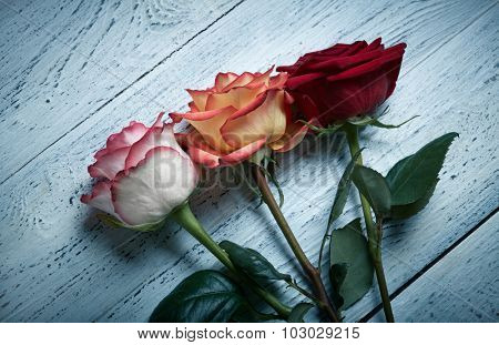 Three roses on wooden background