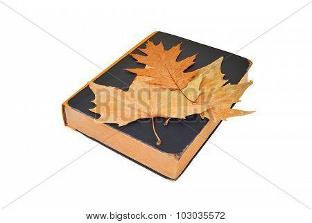 Antique book and autumn leaf