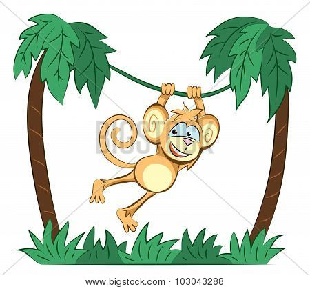 Monkey Jumping On The Palm
