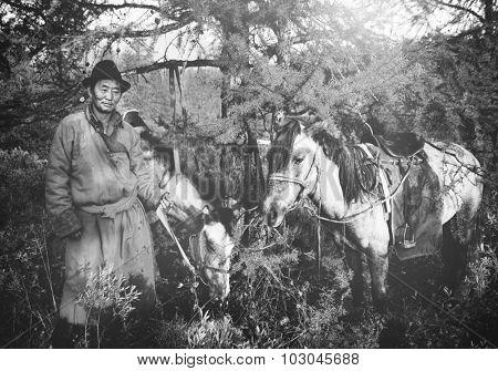 Mongolian Tsataan Horses Tranquil Solitude Nomadic Concept