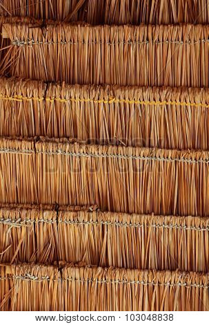 Bamboo roof texture