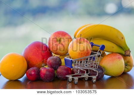 variety of fruits and a small shopping cart on table in the garden