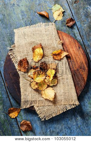 Autumn concept with leaves on wooden board
