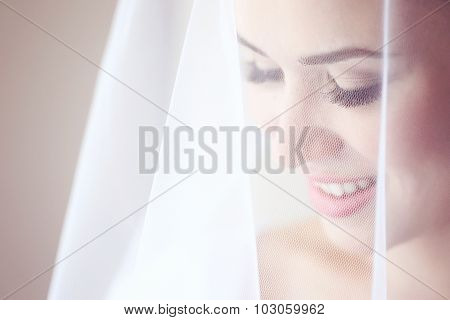 Beautiful Bride With White Veil Posing On Wedding Day