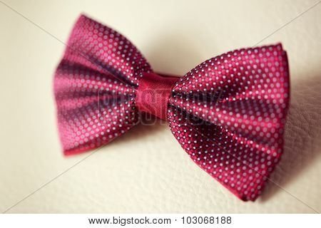 Elegant Bow Tie For The Groom