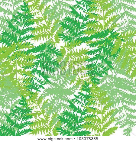 Illustration of pattern with green birch leaves.