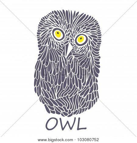 Doodle owl.