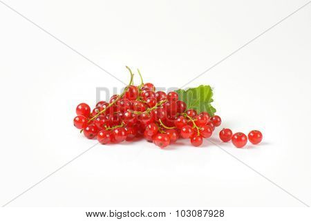 small heap of fresh red currant clusters