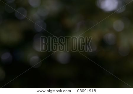 Dark Green And Yellow Background. Bokeh