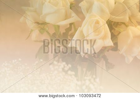 Bunch Of White Rose With Soft Focus And Color Filter
