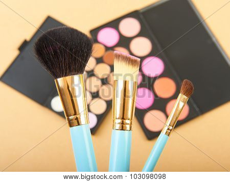 Makeup brush and cosmetic