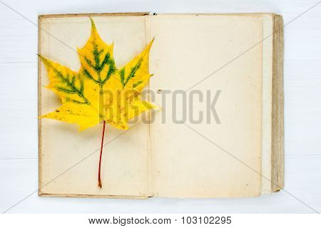 Open Book And Autumnal Maple Leaf