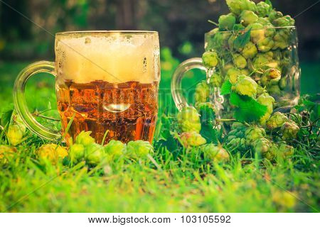 Tankards Full Hop Cones Beer