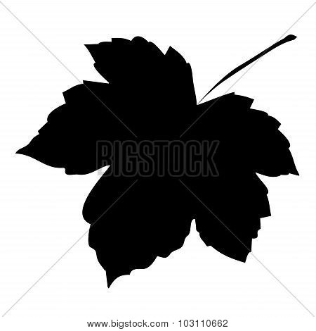 Image Of Silhouette Maple Leaf . Vector Illustration Isolated On White Background.